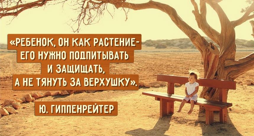 Картинки по запросу цитаты о воспитании детей в семье