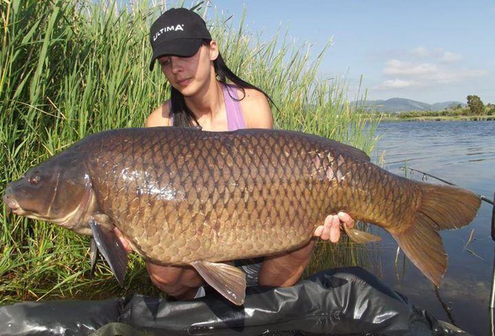 10 самых крупных пресноводных рыб планеты