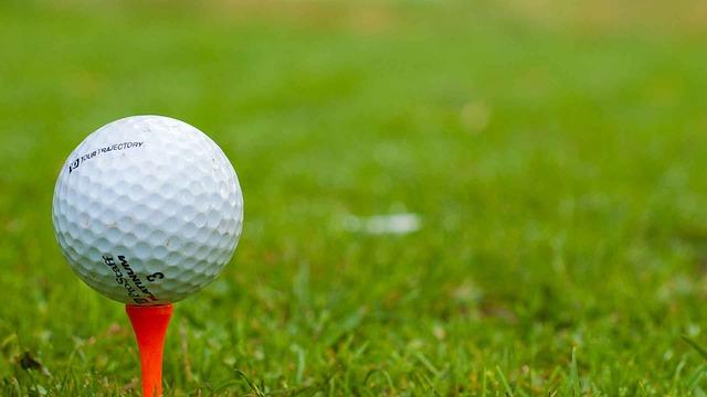 Гольф, самые популярные виды спорта