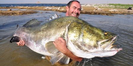 Топ 10 самые большие пресноводные рыбы в мире по весу