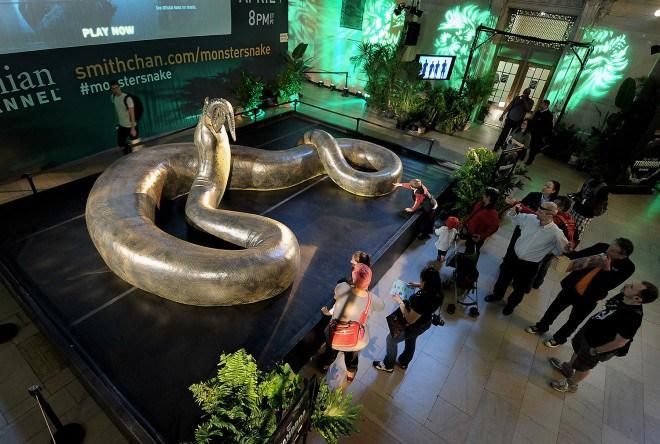 Самая крупный вымерший вид змей
